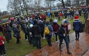 Manifestationen i Stadsparken